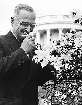 Man Of The House Photograph - Truman Smells A Flower by Underwood Archives