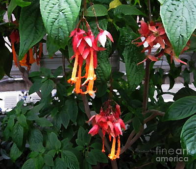 Photograph - Trumpet Flowers by Kathie Chicoine