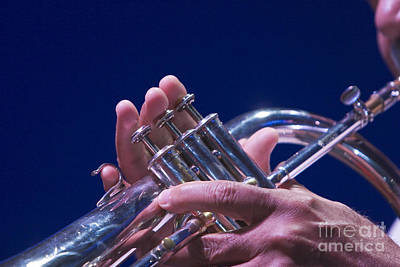 Photograph - Trumpeter by Jim West