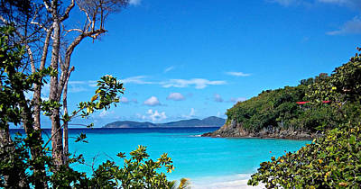 Photograph - Trunk Bay by Caroline Stella