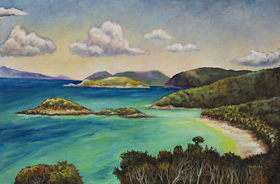 Trunk Bay Overlook Print by Eve  Wheeler