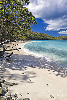 Caribbean Corner Photograph - Trunk Bay Seclusion by George Oze