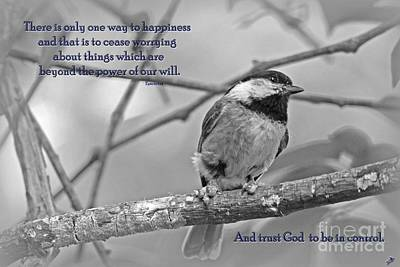 Photograph - Trust God by Sandra Clark