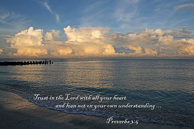 Photograph - Trust In The Lord - Prov 3-5 by HH Photography of Florida