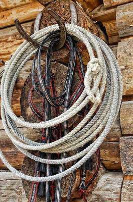 Photograph - Trusty Lasso by Jody Lovejoy