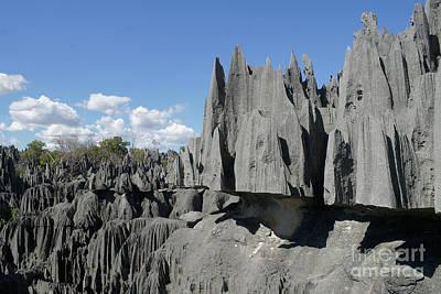 Tsingy De Bemaraha Madagascar 2 Art Print by Rudi Prott