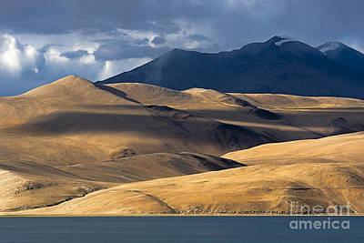 Photograph - Golden Dunes Tso Moriri by Hitendra SINKAR