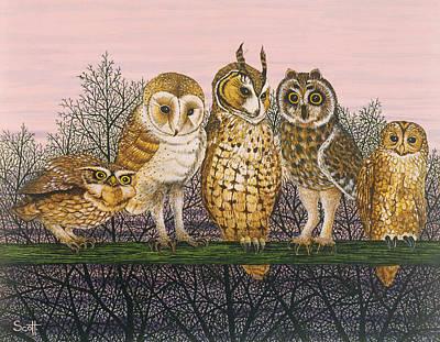 Barn Owl Wall Art - Photograph - Tu-whit Tu-whooing by Pat Scott
