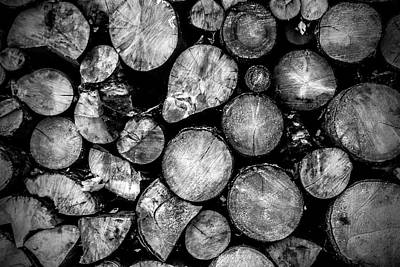 El Amor Photograph - Touch The Wood by Lubos Kavka