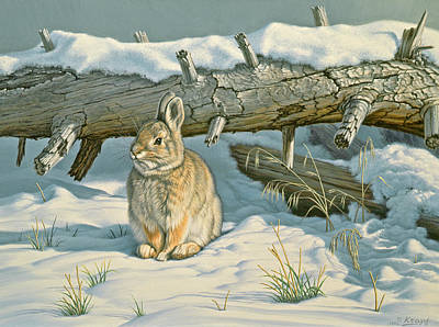 Rabbit Wall Art - Painting - Tucked In by Paul Krapf