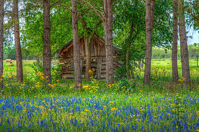Log Cabins Photograph - Tucked In The Woods by Tom Weisbrook