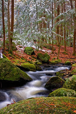 Pine Needles Photograph - Tucker Brook First Snow by Jeff Sinon