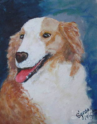 Painting - Tucker by Shelley Jones