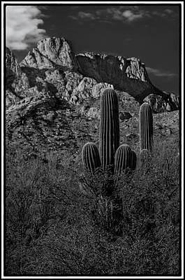 Mark Myhaver Photo Rights Managed Images - Tucson Topo Framed Royalty-Free Image by Mark Myhaver