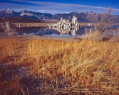 Photograph - Tufa And Frozen Grass-h by Tom Daniel