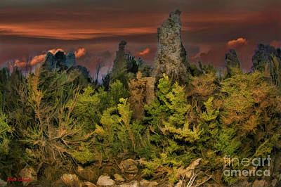 Photograph - Tufa In Bush by Blake Richards