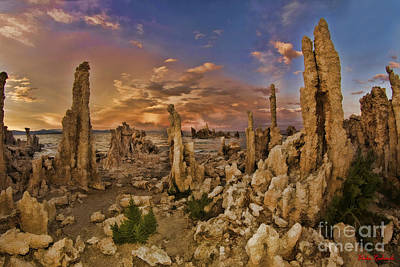 Photograph - Tufa Mono Lake Beauty by Blake Richards