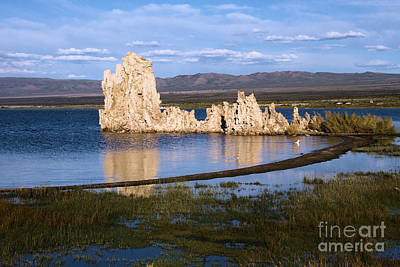 Photograph - Tufa Reflections by Adam Jewell