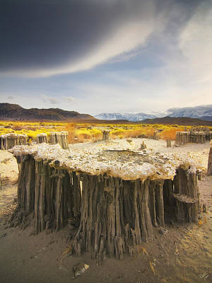 Peter James Nature Photograph - Tufa Time by Peter Coskun