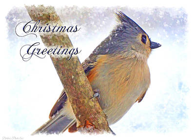 Tufted Titmouse Photograph - Tufted Titmouse Christmas Card by Debbie Portwood