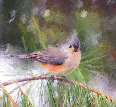 Titmouse Painting - Tufted Titmouse On A Pine Branch - Digital Painting by Kerri Farley