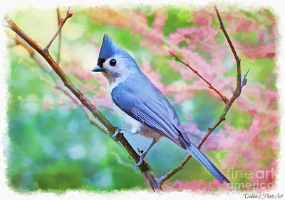 Tufted Titmouse Photograph - Tufted Titmouse With Spring Booms - Digital Paint II by Debbie Portwood