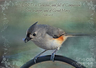 Tufted Titmouse Photograph - Tufted Titmouse With Verse II by Debbie Portwood