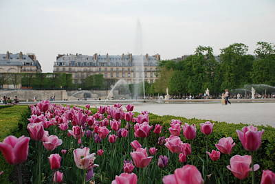 Tuileries Garden In Bloom Art Print by Jennifer Ancker