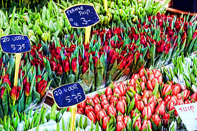 Photograph - Tulips Tulips Tulips By Diana Sainz by Diana Raquel Sainz