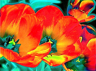 Art Print featuring the photograph Tulip 1 by Pamela Cooper
