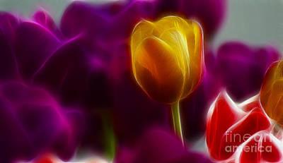 Tulip-6983 Art Print by Gary Gingrich Galleries