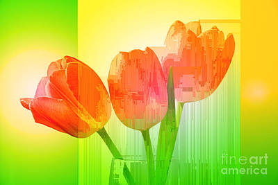 Photograph - Tulip Abstract 1 by Charline Xia