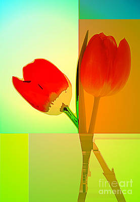 Photograph - Tulip Abstract 2 by Charline Xia