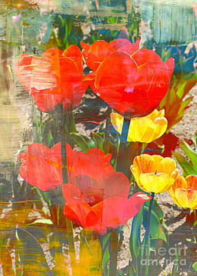 Photograph - Tulip Abstracts by Carol Groenen