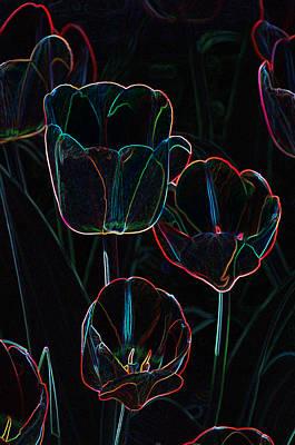 Photograph - Tulip Art by Paul Miller