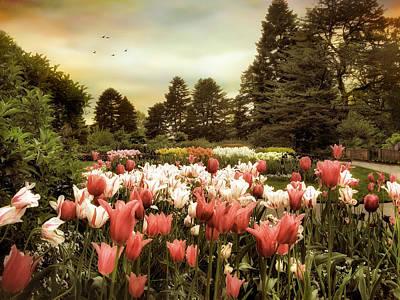 Field Digital Art - Tulip Bloom by Jessica Jenney