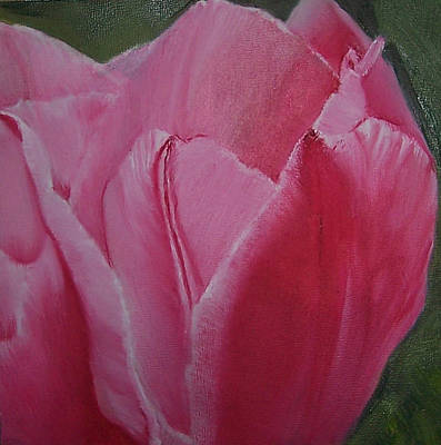 Painting - Tulip Blooming by Claudia Goodell