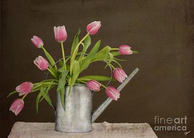 Tulip Bouquet  Print by Alana Ranney