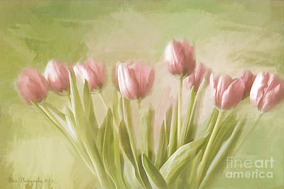 Tulip Bouquet Art Print