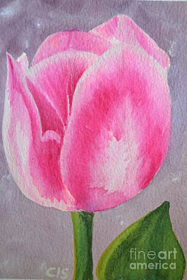 Painting - Tulip by Cecilia Stevens
