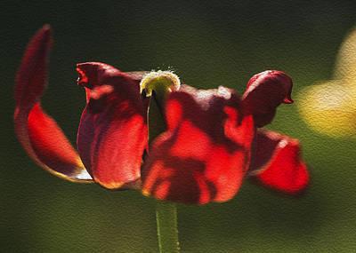 Photograph - Tulip Digital Oil Painting by Vishwanath Bhat