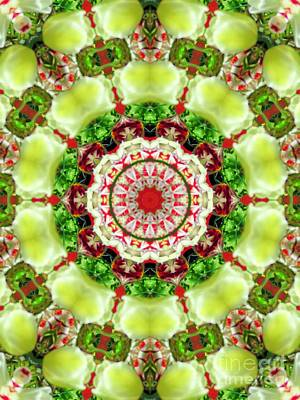 Animal Portraits - Tulip Kaleidoscope by Elizabeth Dow
