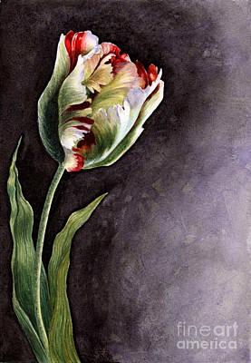 Augustus Painting - Tulip Semper Augustus by Isabella Kung