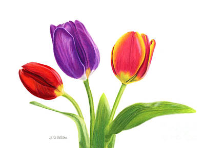 Pinks And Purple Petals Painting - Tulip Trio by Sarah Batalka