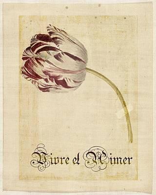 Tulip - Vivre Et Aimer S02t03tr Art Print