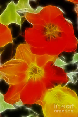 Tulips-6681-fractal Print by Gary Gingrich Galleries