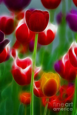 Tulips-7069-fractal Art Print by Gary Gingrich Galleries