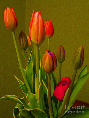 Tulips Against Green Art Print