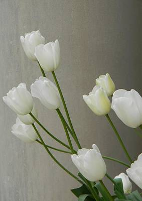 Photograph - Tulips Against Pillar by Jean Goodwin Brooks