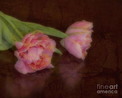 Tulips Art Print by Alana Ranney